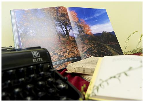 W bibliotece już jesień