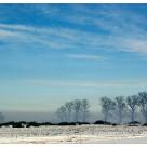 Zima w poezji …i na fotografii konkurs