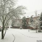 Zima za oknami