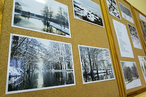 Zima w literaturze i na fotografii