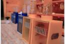 Warsztaty w laboratorium unasieniania matek